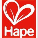 Hape - E3452 - Jeu d'Imitation en Bois - Maison de Poupées - Pièce Multimédia de la marque image 4 produit