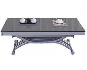 Table basse relevable à allonges Zen - Verre Gris de la marque RDM Concept image 0 produit